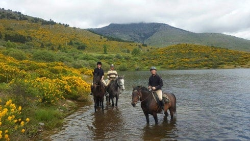 Enjoy horse riding in Madrid with Dreampeaks. Best Horseback Riding tours in Madrid. All levels.